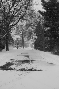 Winter Storm Diana_094