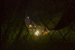 Green Hartford fence