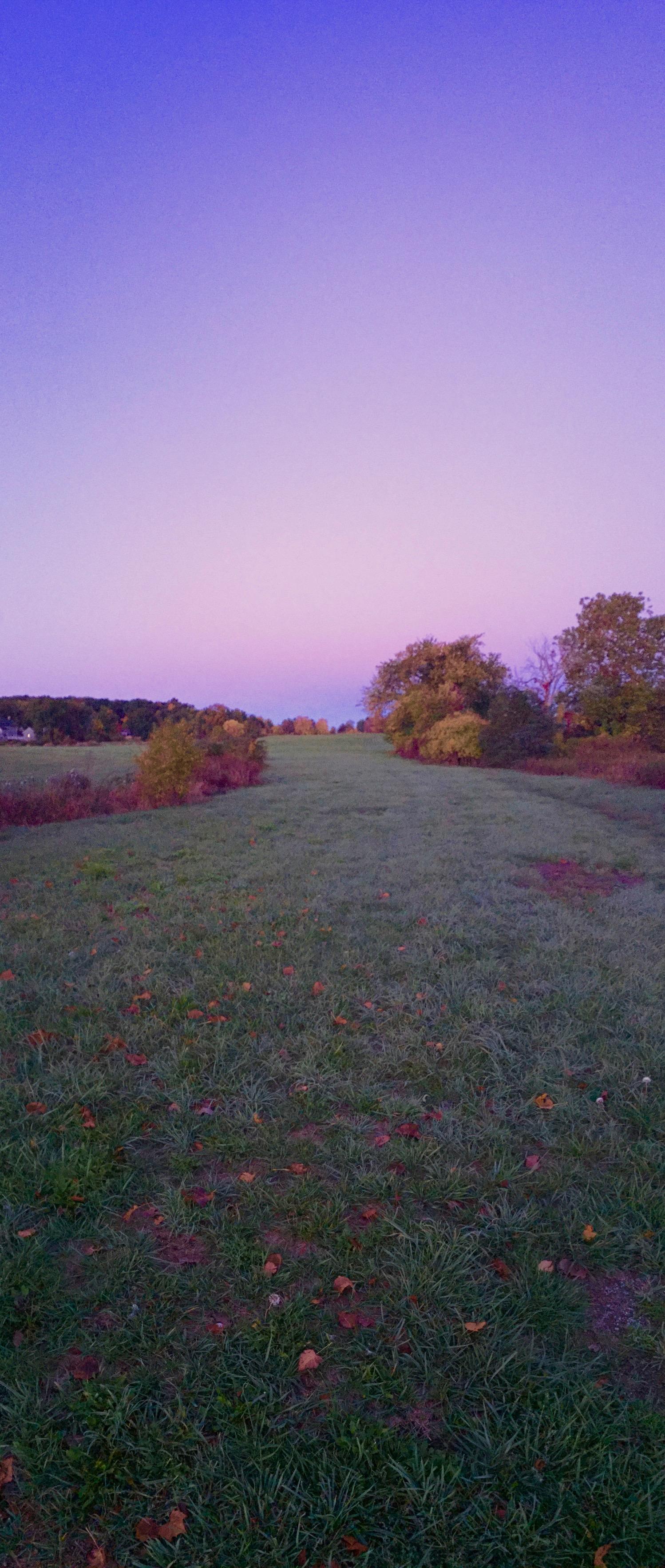 Silo Panorama