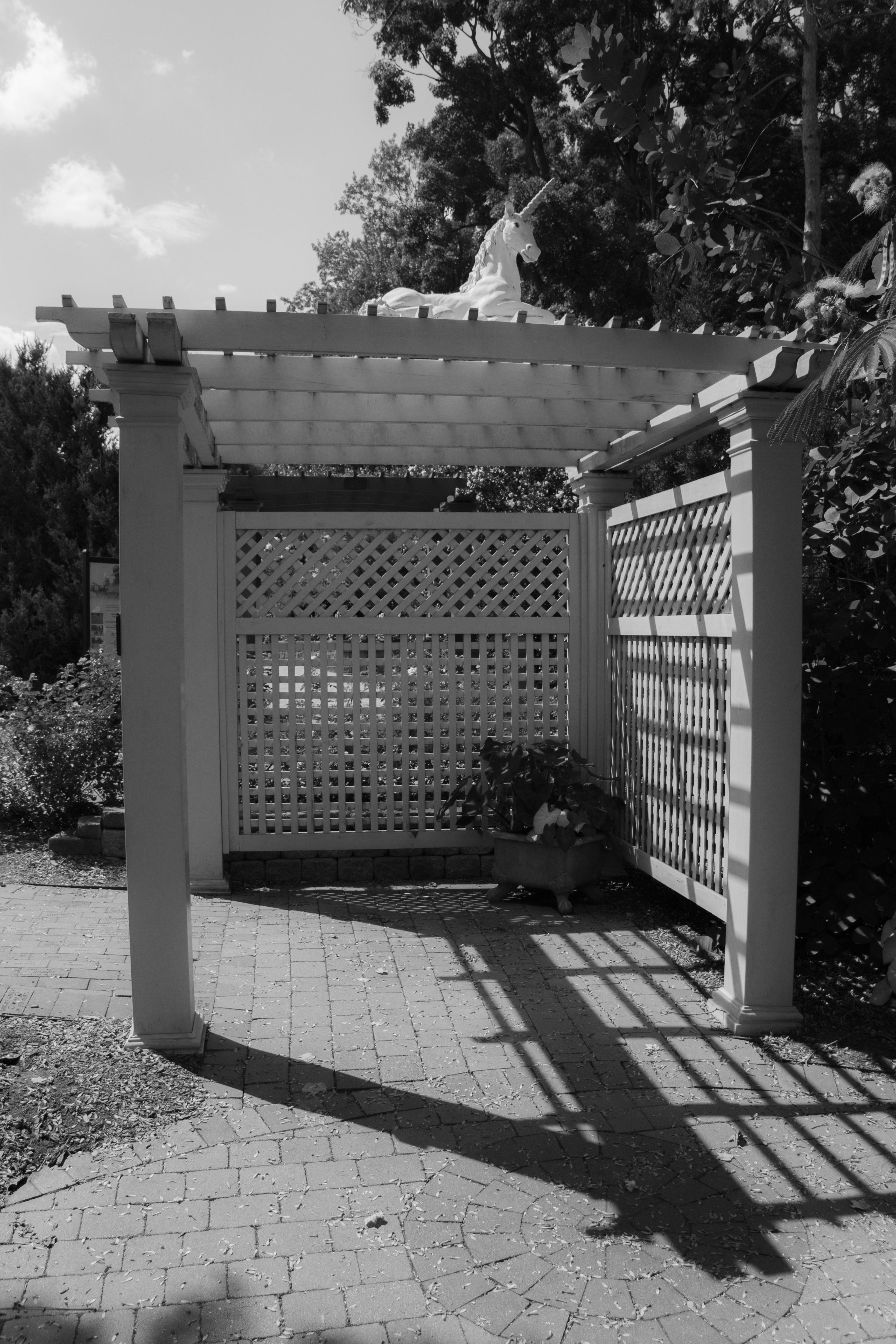Wickham park with Loren_080