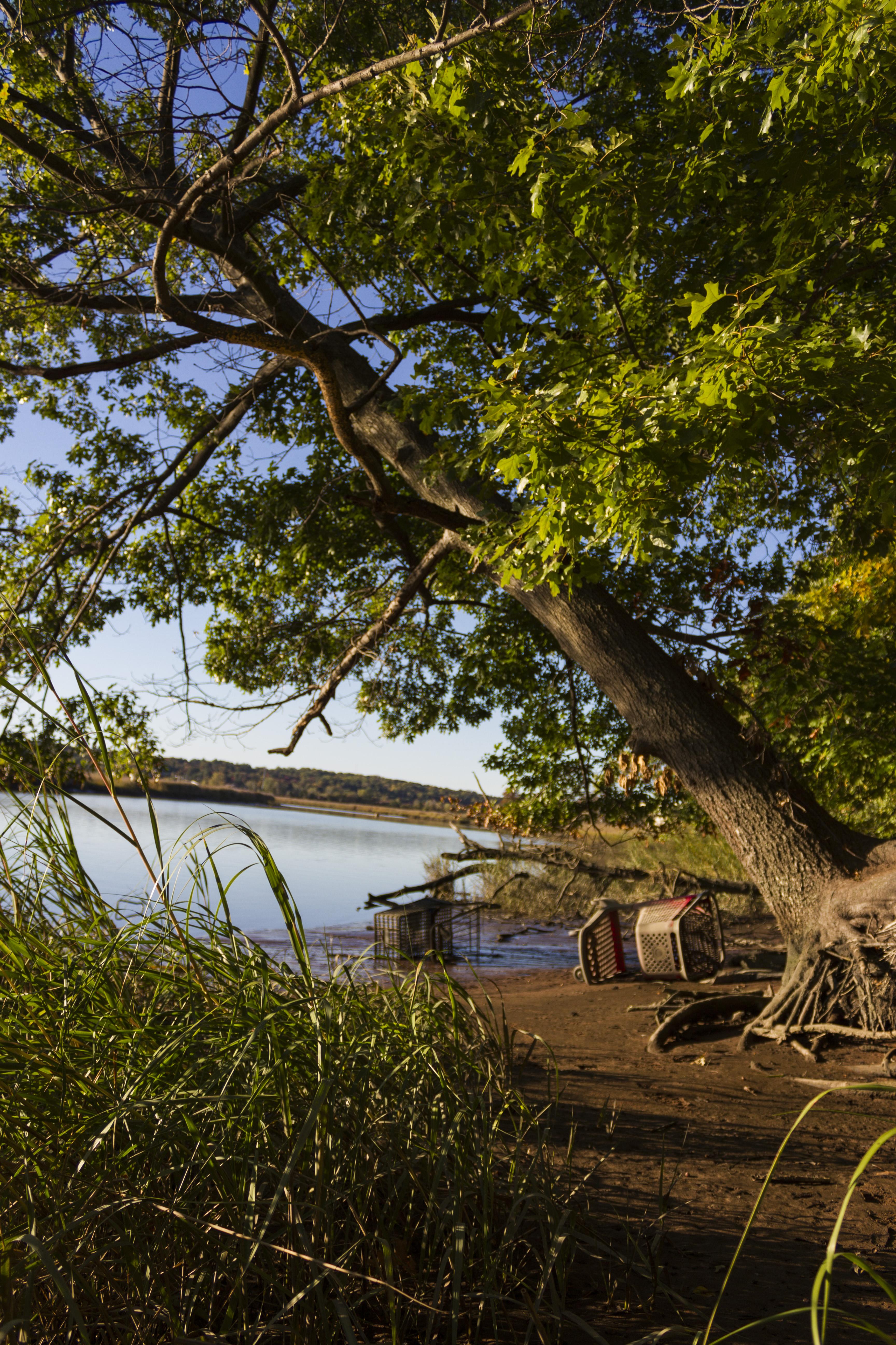 Autumn on the Quinnipiac River_088