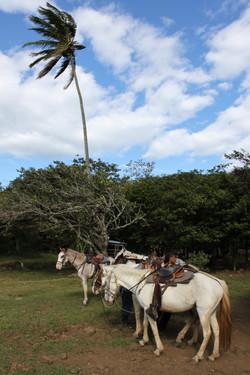 Costa Rica_47