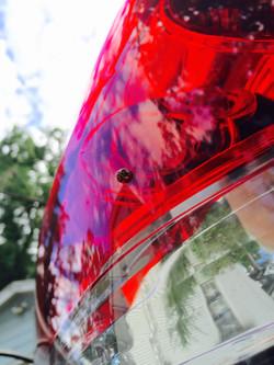 Red Ladybug Lights