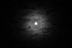 baw moon