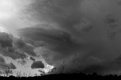 Willow Thunderstorm_170627_275