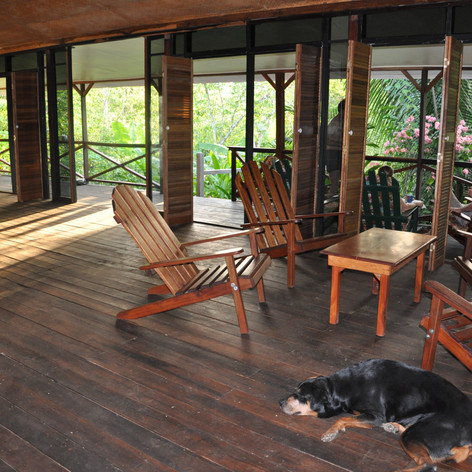 Sitting room overlooking jungle