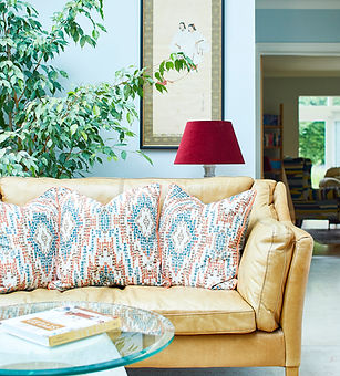 Ikat cushions.jpg