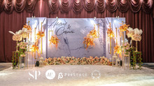 3DPhotobooth + Photo Corner + Reception Table + Walk way + VIP Table