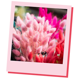 Fuzzy_Flowers.png
