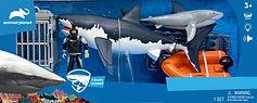 Shark Week 111.jpg