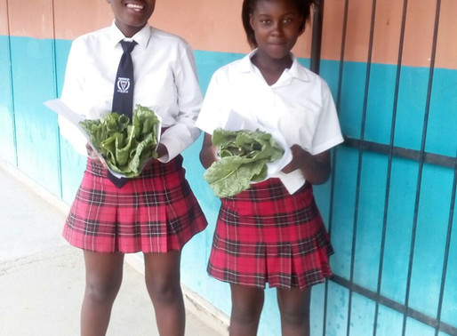 An ongoing gardening educational initiative at Charleston Hill Secondary School