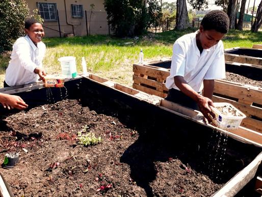 Simondium's Garden is underway...Eco-learning lesson #1 🌱 A PPECB CSR Initiative.