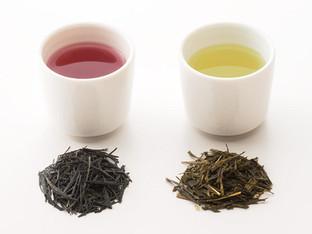 花青素茶   紅富貴茶