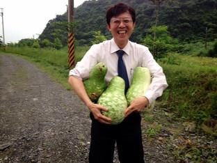 農場的野菜