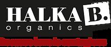 Halka-B-block-simple-grey-400px.png