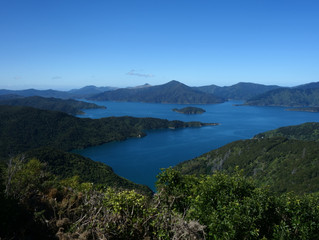 Thank you South Island! - Havelock to Ship Cove