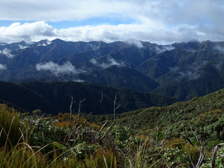 Watery, windy & wicked Tararuas - Waikanae to Palmerston North