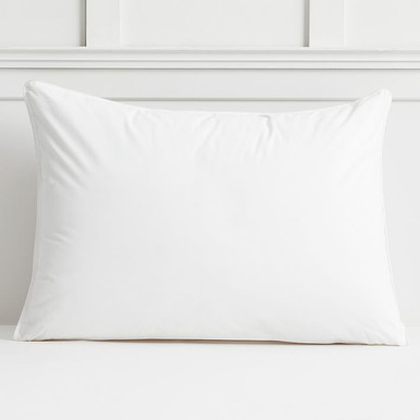 Stay Fresh Pillow Insert