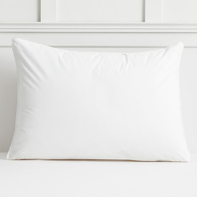 Stay Fresh Pillow Insert