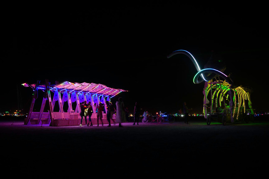 Archaeopteryx art installation at Burning Man