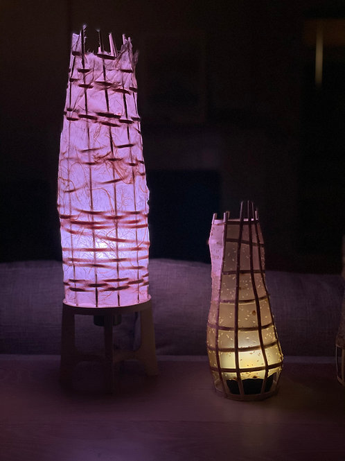 Mini Bio-Lantern