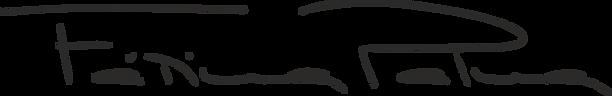 Logo Fatima Palma.png