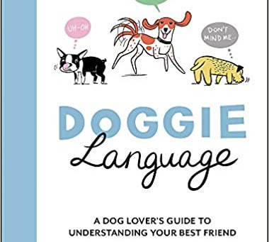 FREE ONLINE Doggie Language Event with Lili Chin