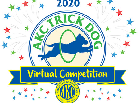 AKC Trick Dog has gone virtual!