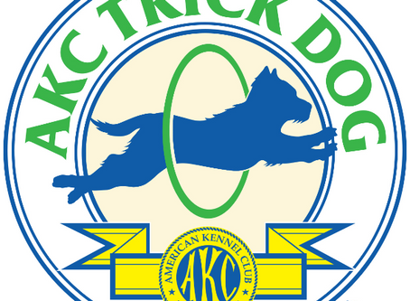 Two fabulous AKC programs!