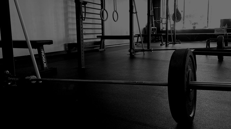 personal training, sports medicine, & post physical therapy in ferndale, mi