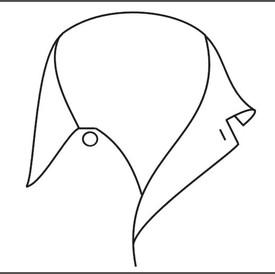 Camp collar