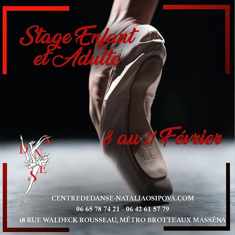 Stage février.png