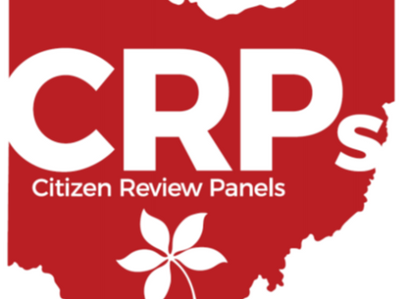 Federally mandated child welfare review panel releases annual report