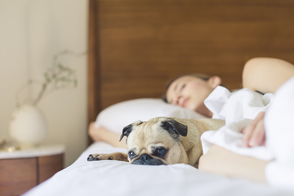 Farnan Real Estate - 5 Tips for Finding the Right Mattress