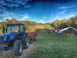 Ramsey's Farm, Wilmington, Delaware