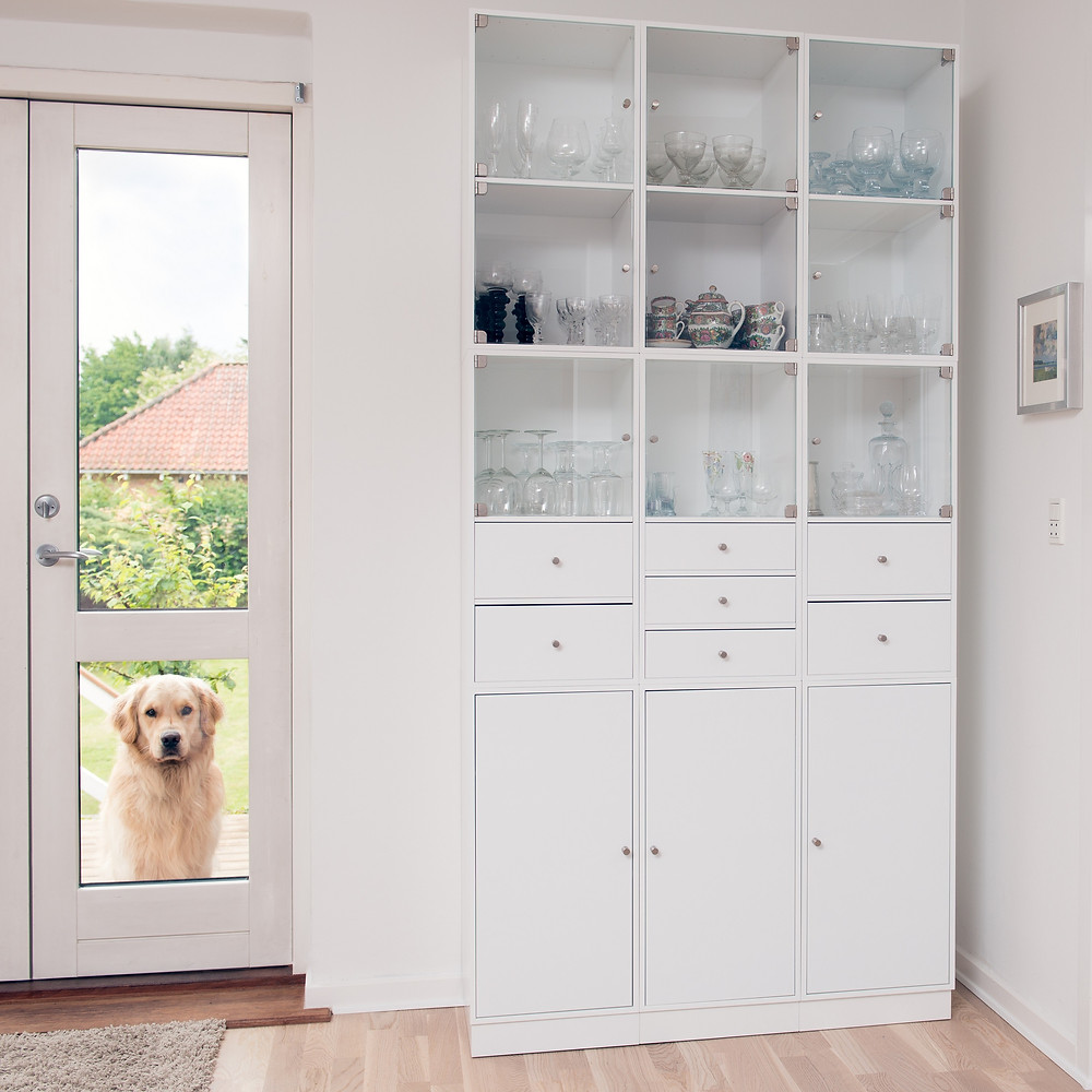 Farnan Real Estate, A Patterson-Schwartz Agency - Doggie Door Safety: What to Know