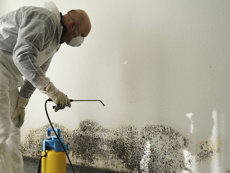 5 Tips for Reducing Mold in Your Basement
