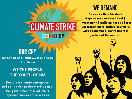 Join global climate strike on Friday
