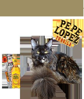 Wytopitlock Pepe Lopez