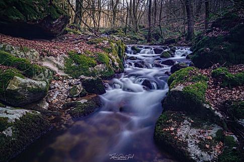 Ruisseau de la Proie - Arleuf.jpg