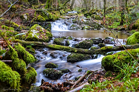 4- Cascade des Joies - Arleuf