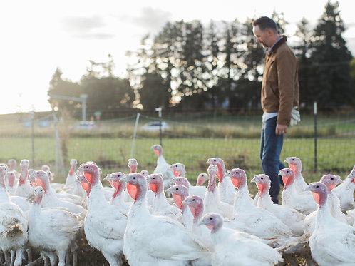 FRESH Pastured Turkey | DEPOSIT