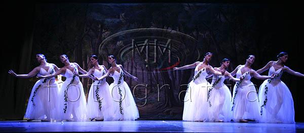 FESTIVAL 2008 414