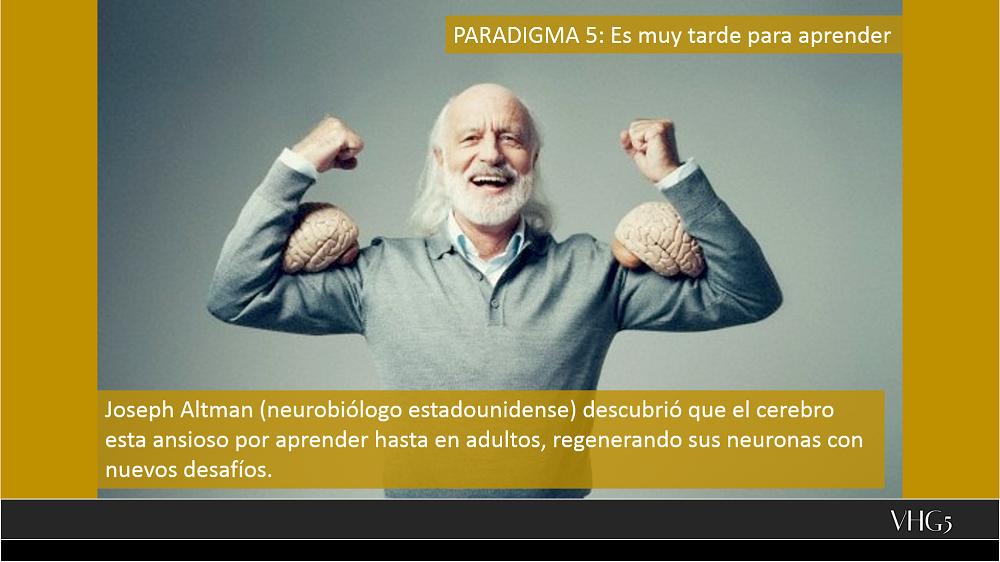Paradigma 5
