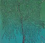 버드나무2 30x50 cm 자작나무에 천연 옻칠, 자개 2018.jpg