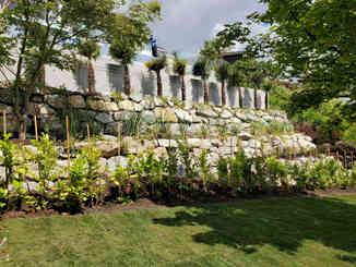 New Garden Installation