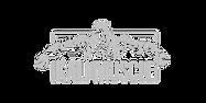 App logo for Roku - 200X100.png