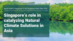 Singapore's role in catalyzing Natural Climate Solutions in Asia