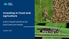 Insect-based solutions for food, feed and waste