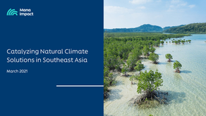 Catalyzing Natural Climate Solutions in Southeast Asia